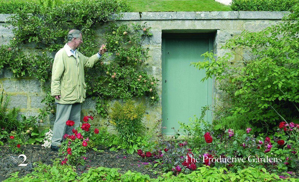Elements of Organic Gardening_05